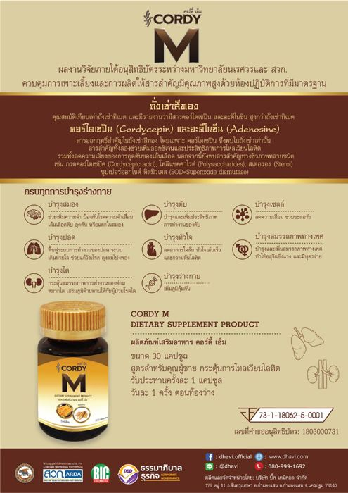 CORDY M DIETARY SUPPLEMENT PRODUCT /  3 Bottle X 30 Capsule